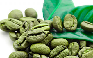 Cafeaua verde - proprietăți, beneficii și recomandări Enigma Plant