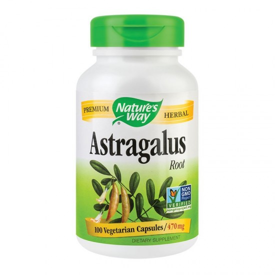 Astragalus Root Nature's Way, 100 capsule, Secom