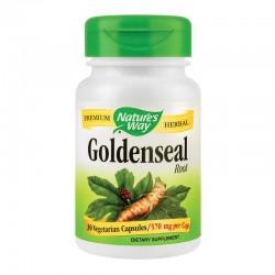 Goldenseal Root 570 mg Nature's Way, 30 capsule, Secom