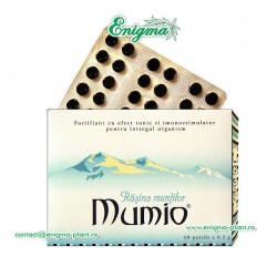 Mumio - Rasina Muntilor