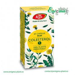 Colesterol 2 cu anghinare si frunze de măslin, M105A, capsule