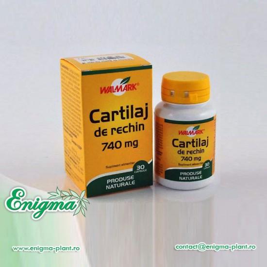 Cartilaj de Rechin