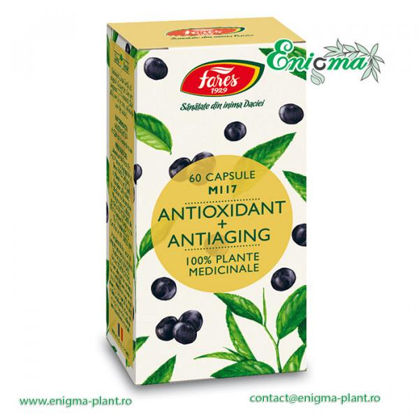 Antioxidant + Antiaging, M117, capsule