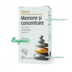 Memorie si concentrare