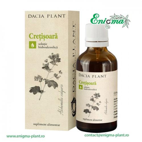 Cretisoara tinctura - 50ml
