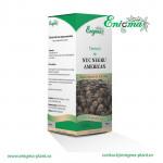 Pachet promotional 3 sticle Tinctura de Nuca Neagra+Cuisoare+Pelin - Program Deparazitare