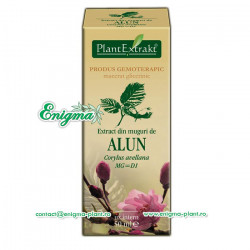 Extract din muguri de alun - 50ml