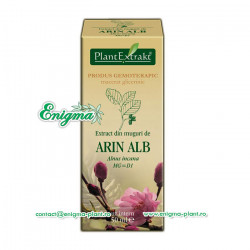 Extract din muguri arin alb - 50ml