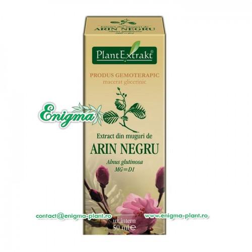 Extract muguri arin negru – 50ml