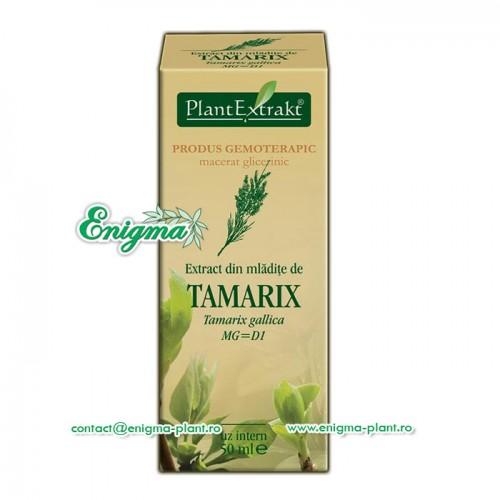 Extract din mladite de Tamarix – 50ml