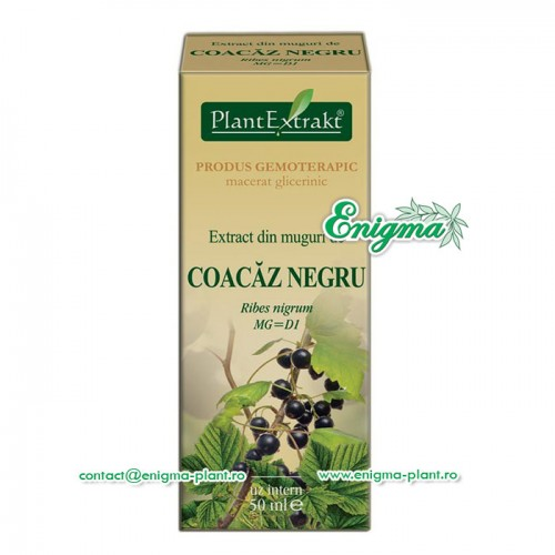 Extract din muguri de coacaz negru - 50ml