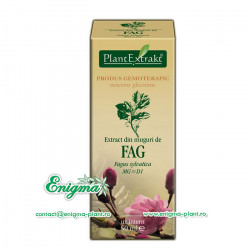 Extract din muguri de fag – 50ml