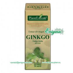 Extract din muguri de Ginkgo – 50ml