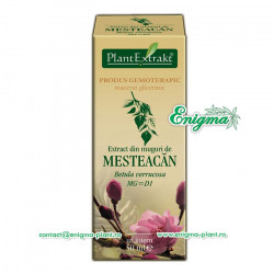 Extract din muguri de mesteacan – 50ml