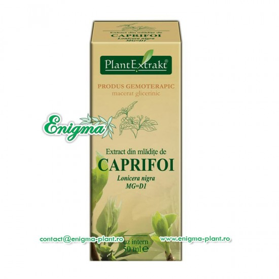 Extract din mladite caprifoi – 50ml