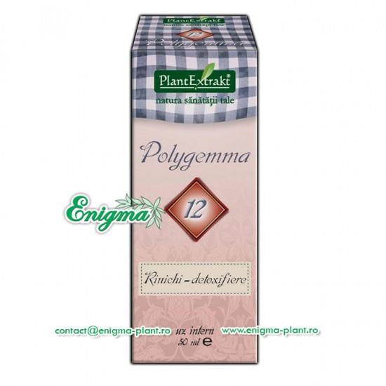 Polygemma 12 - Susţine funcţia de detoxifiere a rinichiului – 50ml