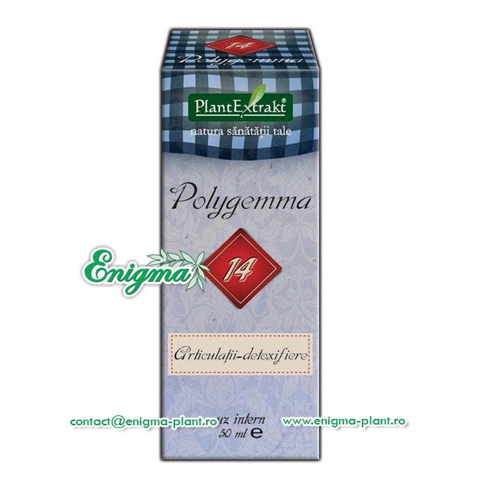 polygemma 14
