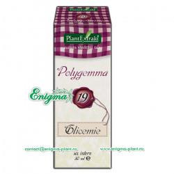 Polygemma 19 - Ajută la menţinerea nivelului normal al glucozei în sânge – 50ml