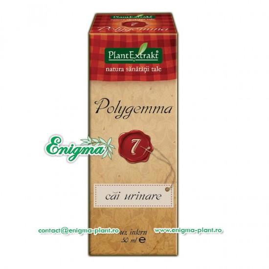 Polygemma 7 – Cai urinare – 50ml