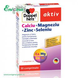 Doppelherz® aktiv Calciu + Magneziu + Zinc + Seleniu