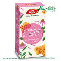Echinacea cu propolis și vitamina C, F170, comprimate masticabile